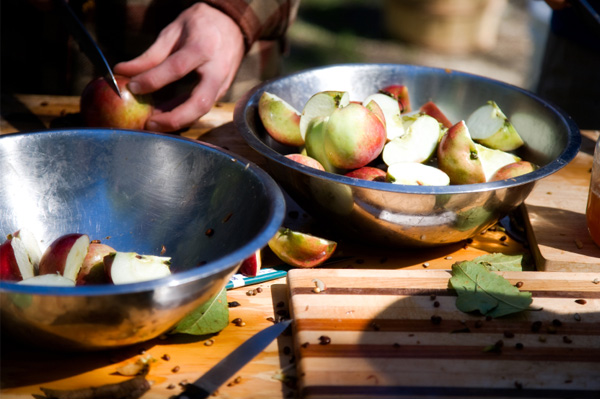 Slicing apples for apple cider