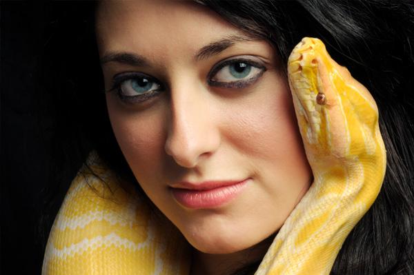 nọc rắn độc, làm đẹp với rắn độc