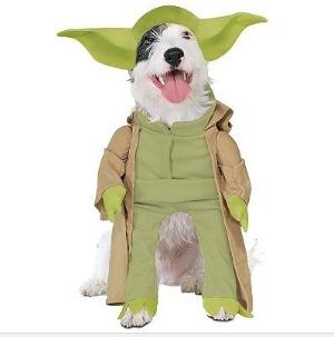 Yoda dog Halloween costume