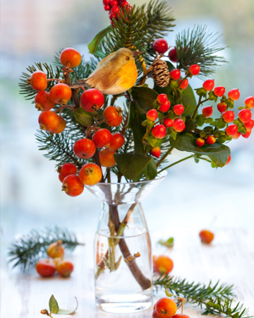 Christmas vase with cranberry and fig