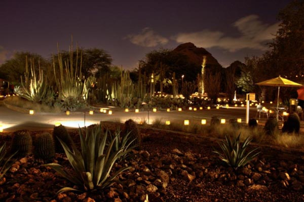 Luminarias at Phoenix Botantical Gardens