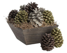 pinecone firestarters
