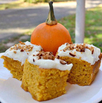 Low fat pumpkin cake bars