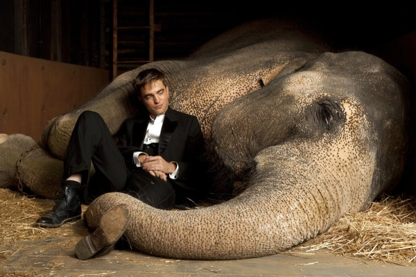 Robert Pattinson and Reese Witherspoon's Water for Elephants comes home