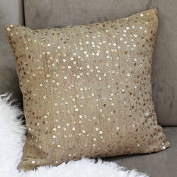 West Elm Sparkle Pillow