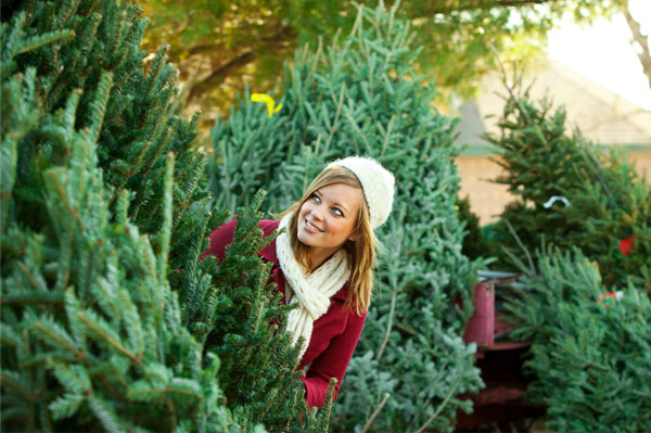 Woman on Christmas tree farm