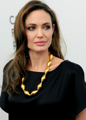 Angelina Jolie answers plagiarism charges