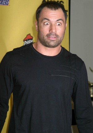 Joe Rogan Fear Factor Fear factor solid ratings