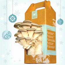 Healthy gourmet gift ideas