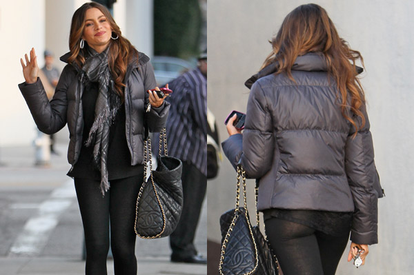 Sofia Vergara wears see-through pants while shopping