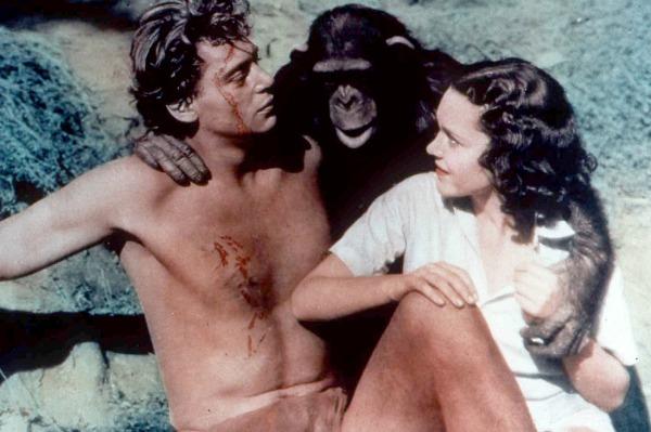 Chimp wasn't Tarzan's Cheetah