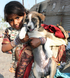 Wedding custom India - Girl marrying dog/goat to ward off ghosts