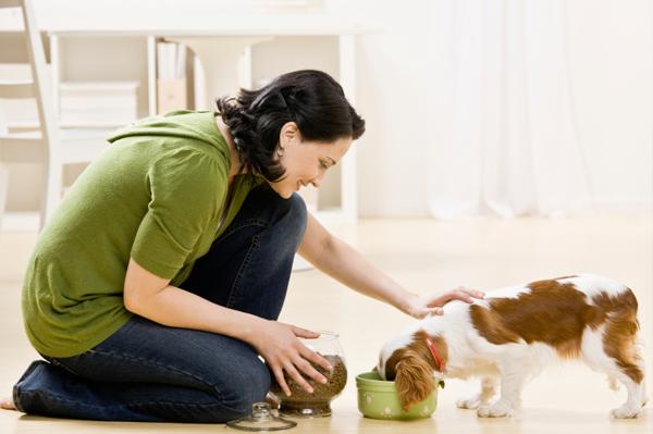 Woman feeding her dog dog food
