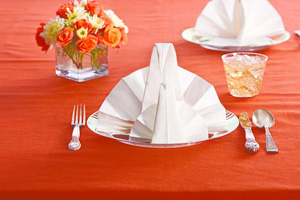 Chinet napkin folds a new way to decorate for How to fold napkins into turkeys