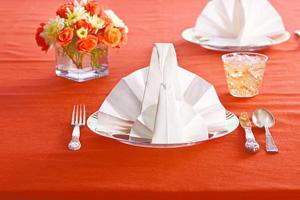 Turkey napkin fold