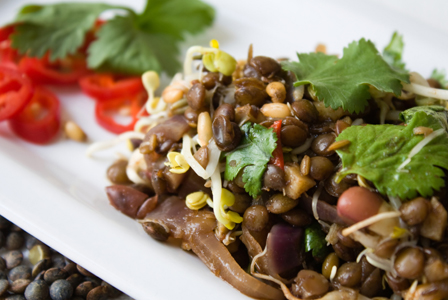 ... recipe for warm lentil salad with grilled portabella fits the bill