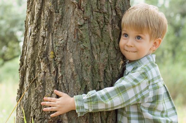 little boy hugging tree