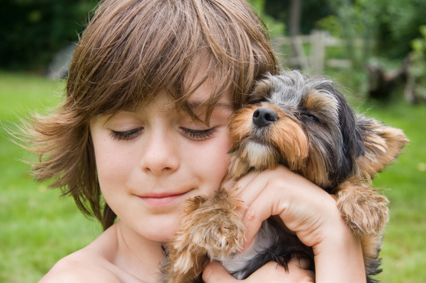 Young boy hugging his yorkie puppy