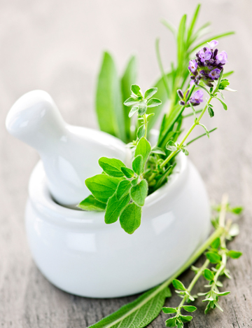 Cooking with spring herbs