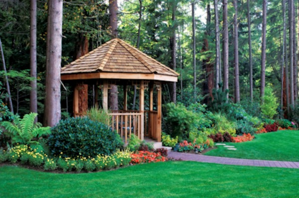 Backyard Forest Management :  be a beautiful addition to your property in the yard or garden it s