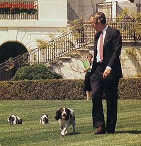President: George H.W. Bush