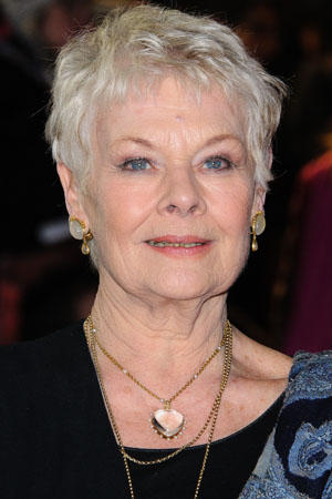 Dame Judi Dench won't retire, she says