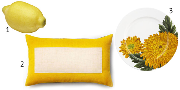 Yellow accent pieces