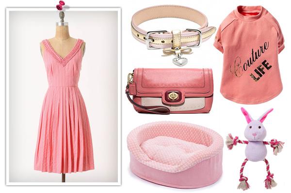 Dog and human pink fashions