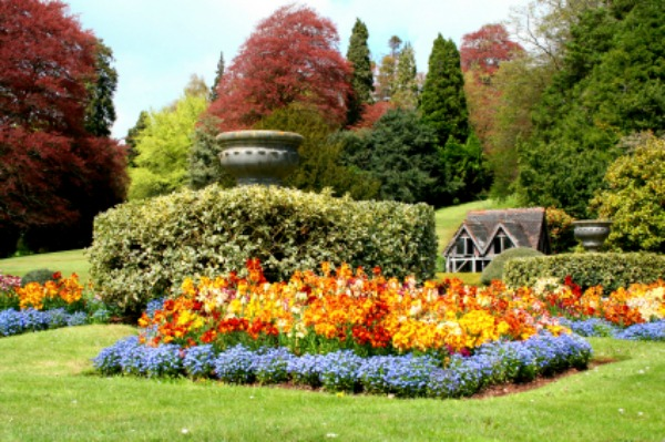 English garden