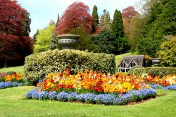 Create a traditional English garden