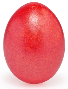 Easter egg died with wine