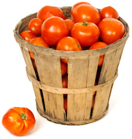 Basket of tomatos