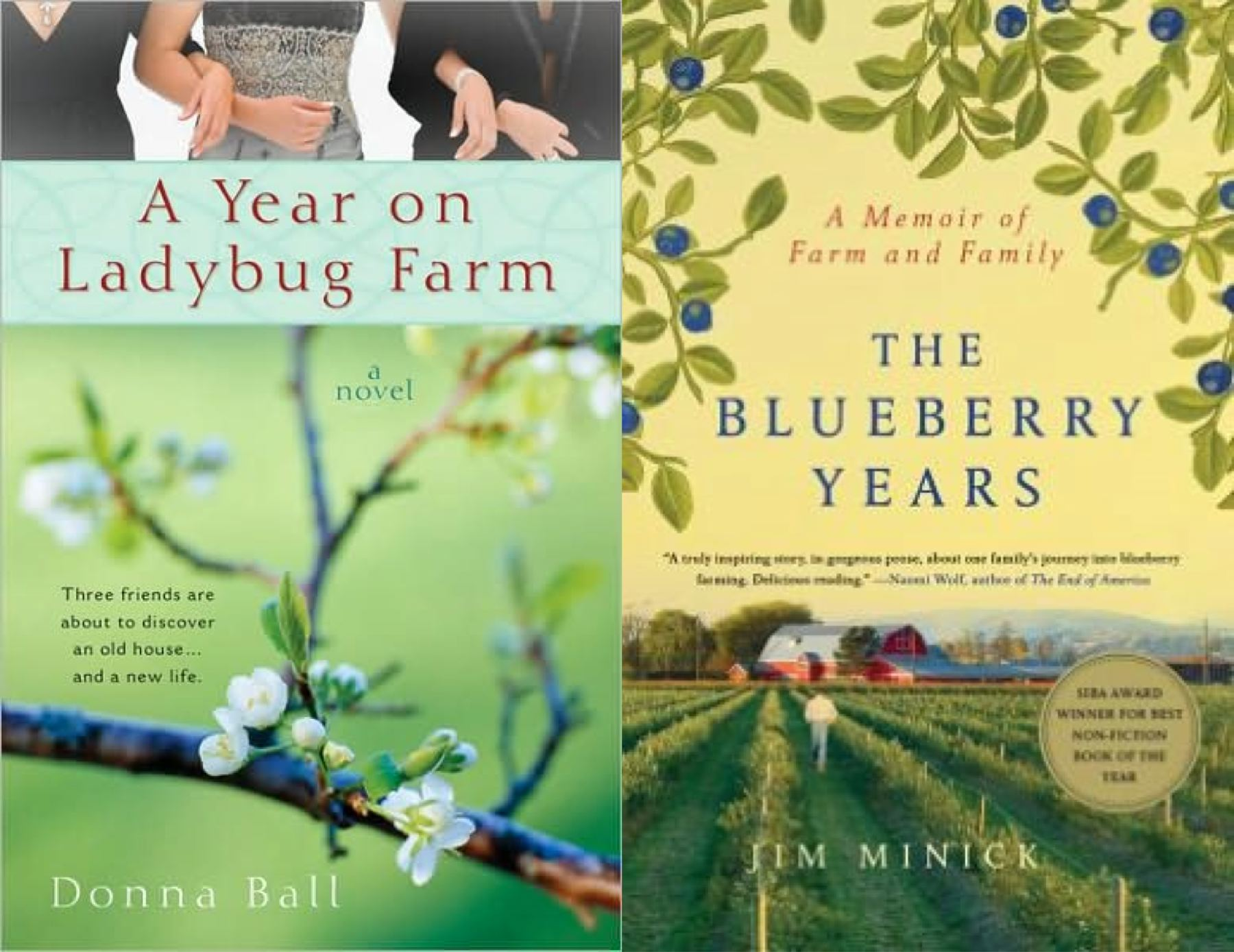 ladybug blueberry book covers