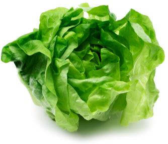 Love lettuce?