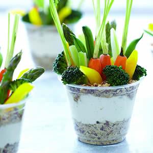 Lighten Up Spring Salad Recipes
