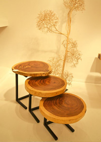 Sliced wood gets a modern spin as nesting tables with clean metal legs.