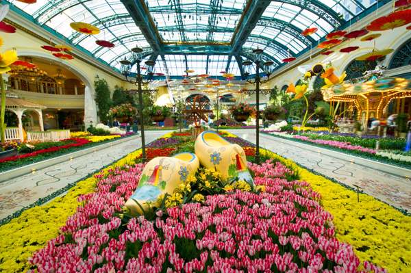 Bellagio's Conservatory & Botanical Gardens