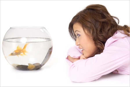 http://cdn.sheknows.com/articles/2012/04/woman-with-pet-fish.jpg