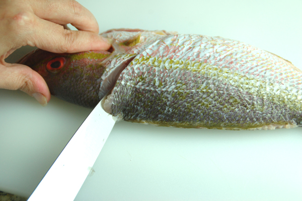 How to fillet a round fish