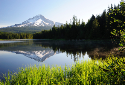 Take your family camping in Oregon