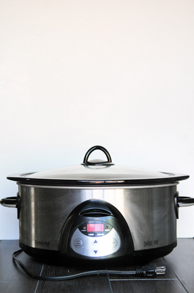 crock pot photo