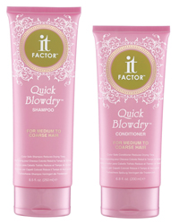 It Factor Quick Blowdry Shampoo and Conditioner