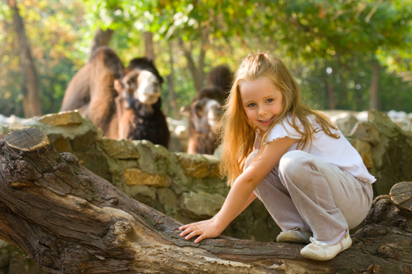 Little girl at zoo