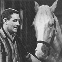 Mr. Ed