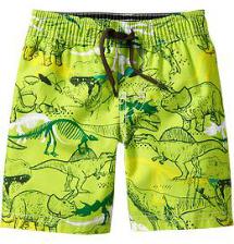 dino print trunks