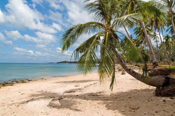 Beach-hopping guide