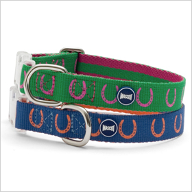Mascot Lucky Horseshoe Eco-Sport collar