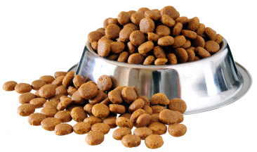 Benefits of premium Dog Food