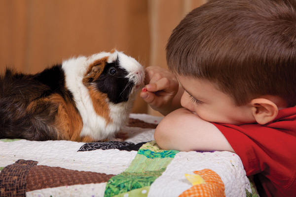 Pets can help kids' health and social lives