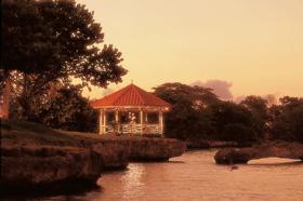 Take a trip to the tropics